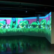 Ingeborg Lüscher, «The play ist everywhere», 2004 – 2006, 5-Kanal-Video-Installation, 10 Min. Loop