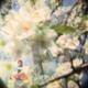 Guy Tillim (RSA): Daison Luke and Faness Bisamoro, Petros Village, Malawi, 2006Vanessa Püntener (CH): aus der Serie Alp, 2006Olga Titus (CH): Han es Herzeli wie äs Vögeli, Videostill, 2006