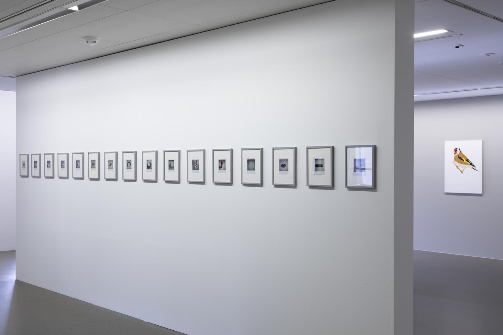Ulrich-Meister_Polaroids-o.-T._Stieglitz-2017_poesie_fxb_8917